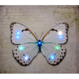 LED Canvas Butterfly Wall Painting